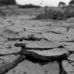 地割れの夢診断